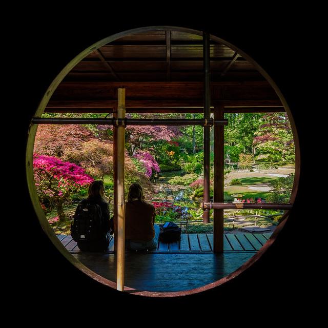 Japanese Garden, Clingendael, The Hague, Netherlands [Explored]