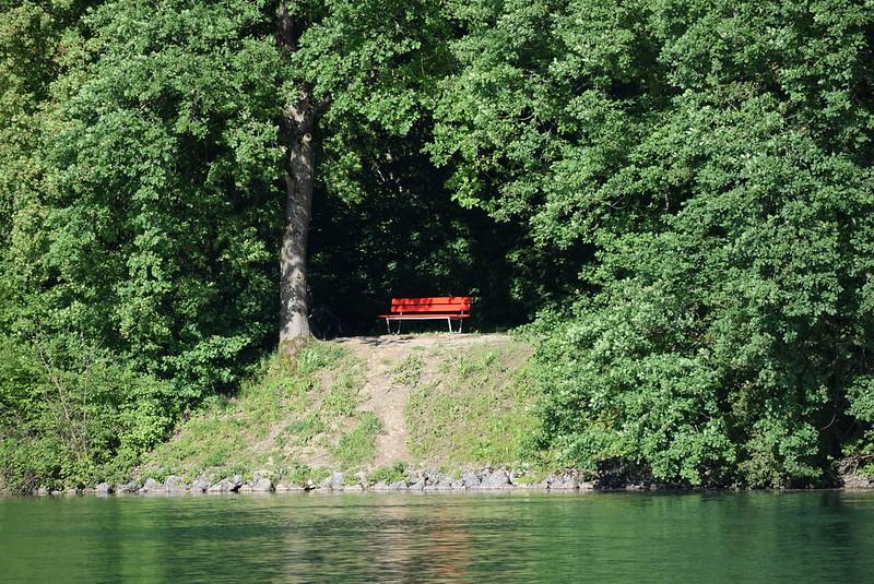 River Aare 24.05 (17)