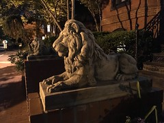 Lion statues guard a house, 21st and N streets NW, Washington, D.C.