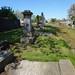 Irvine Old Parish Churchyard (442)
