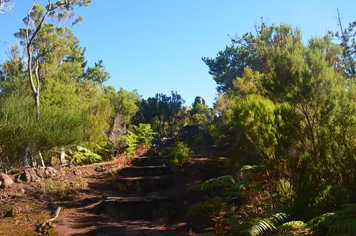 Der Weg zum kleinen Gipfel