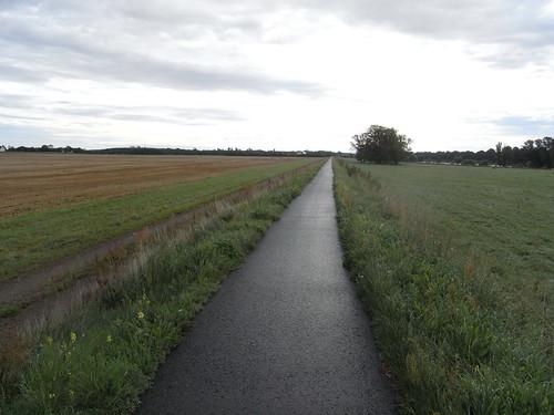20100827 031 0107 Jakobus Weg Feld Bäume Wolken