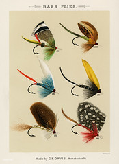Bass Flies from Favorite Flies and Their Histories by Mary Orvis Marbury. Digitally enhanced from our own original 1892 Edition.
