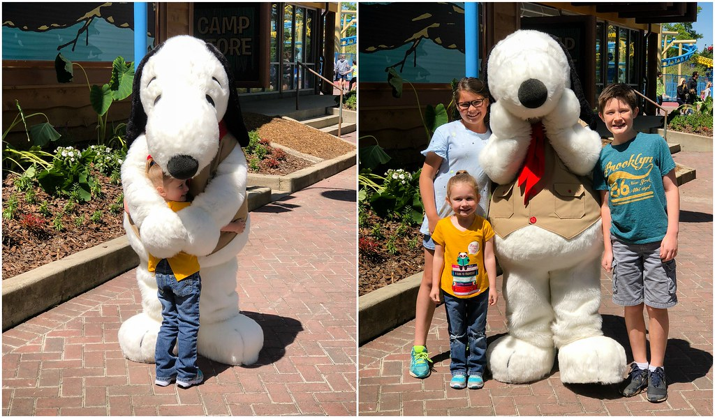 meeting snoopy