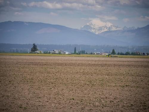 Samish Flats Fields-007