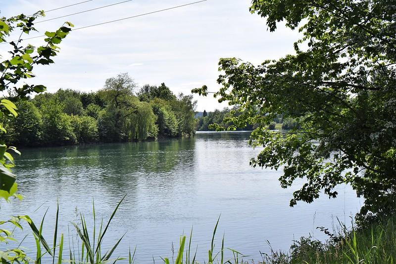 River Aare 12.05 (11)