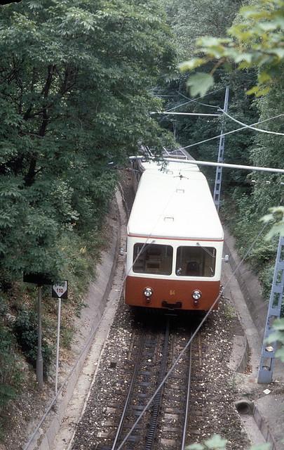 Zahnradbahn  ET 64  Budapest  02.07.79
