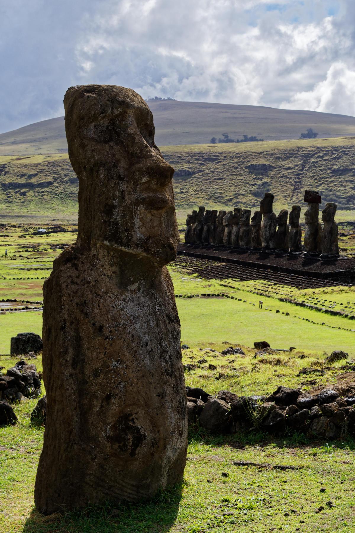 The travelling moai