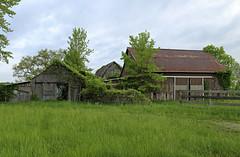 Dort Barns — Jerome Township, Union County, Ohio