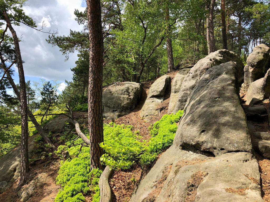 Auf dem Großen Teichstein