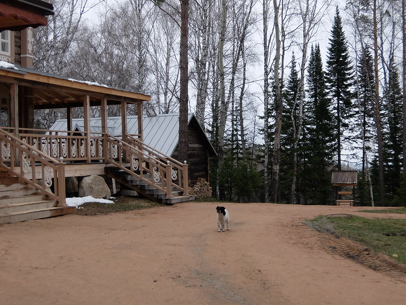 Белокуриха-2 - Двор в Андреевской слободе