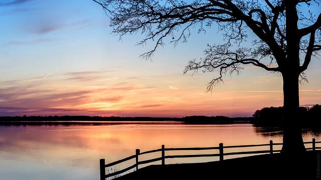Just evening ., Nikon D810, AF-S VR Zoom-Nikkor 70-200mm f/2.8G IF-ED