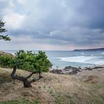 8. Aprill 2018 - 11:38 - 大須賀海岸 7RB04515-Edit.jpg