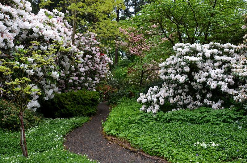cecil-smith-garden-5