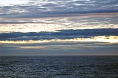 At Sea in Antarctica
