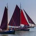 Sailing on the Haringvliet