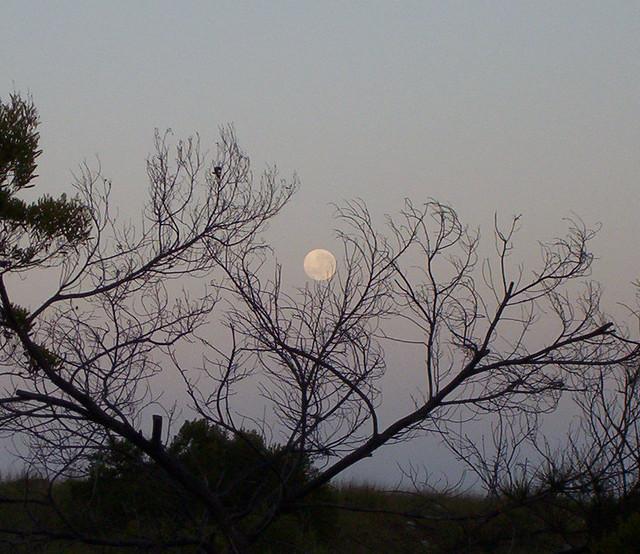 Moonset 10-8-06