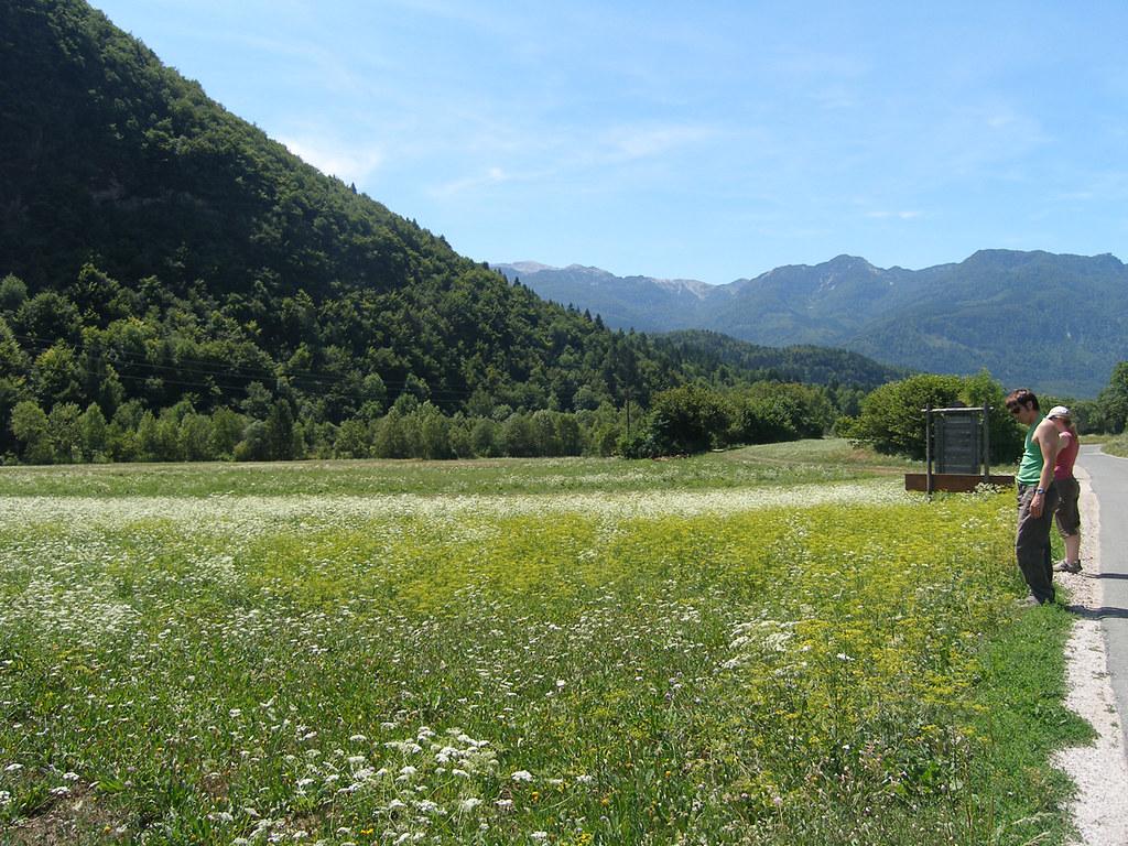 Slovenia019