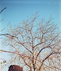 Photo05_1A