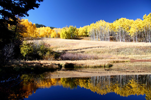 fall nature landscape colorado thechallengegame