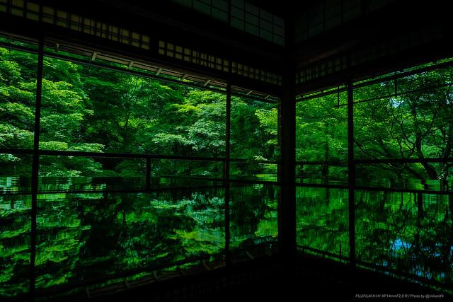 深緑瑠璃光院