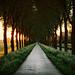 Walking Towards the Setting Sun