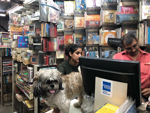 Such Happiness! My Hyperlocal Bookseller is a... Dog!