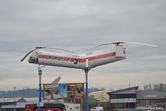 Piasecki H-21