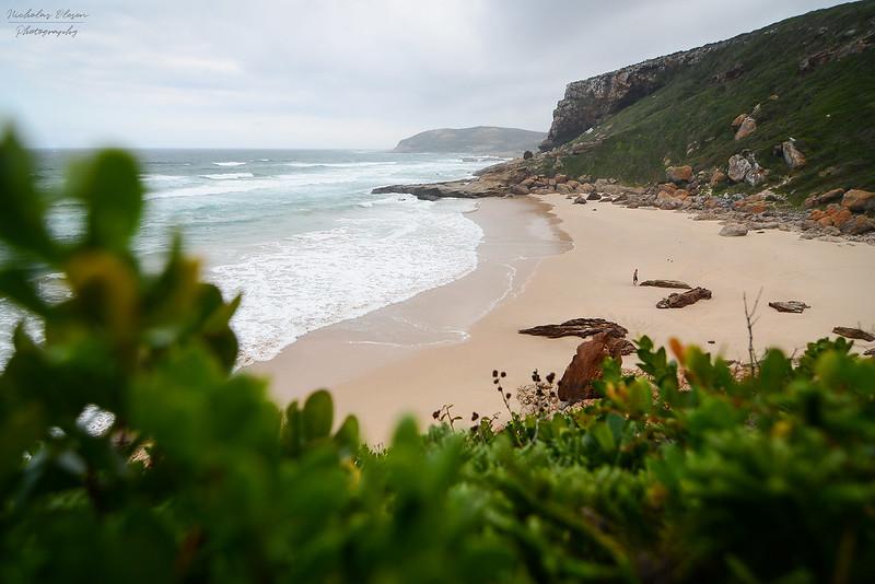 South Africa | Robberg Pensinsula Beach
