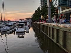 Sea level at the Wharf, 2018-5-20
