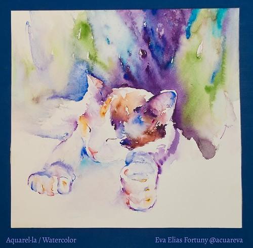 Lua dormint, sèrie infantil. Aquarel·la de l'artista Eva Elias.