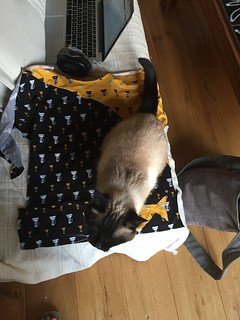 cat help catfabric fabric sewing
