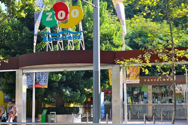 3r d'ESO al Zoo de Barcelona