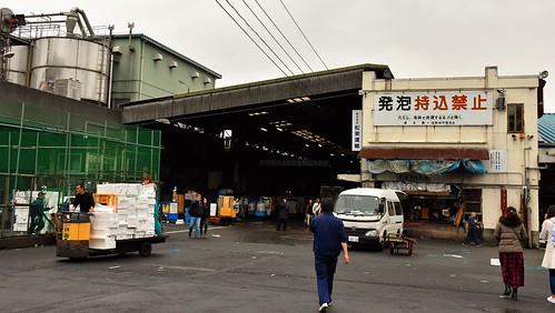 442 Tsukiji, Mercado de pescado en Tokio (35)