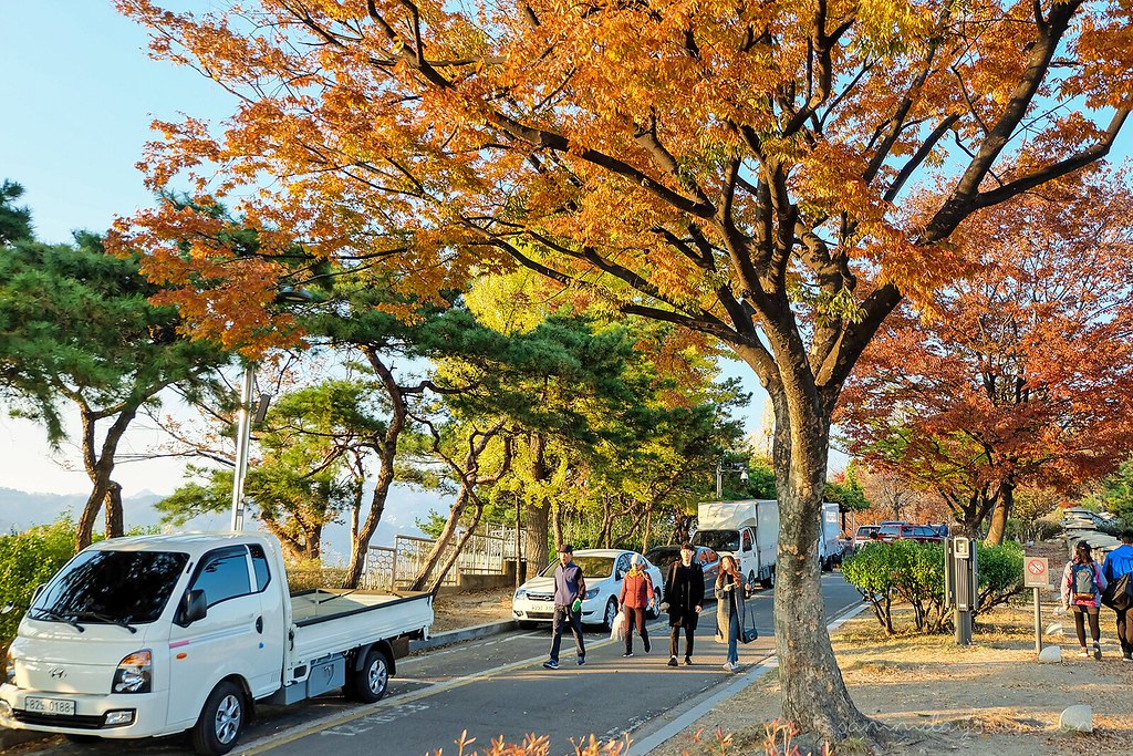 autumn_naksan_park