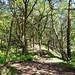 The path through Cowraik Quarry to Gibbet Hill.