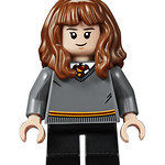75956 Harry Potter Quidditch Hermione