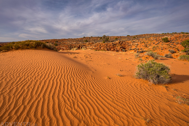 Sand Behind Camp