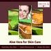 aloe vera skin benefits - 23 May 2018