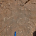 Small photo of At the Devonian Mud Mounds