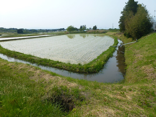 globallyimportantagriculturalheritagesystemsgiahs osakikodo japan