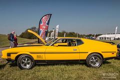 Donington Historic Festival #2 - Mustang Gathering