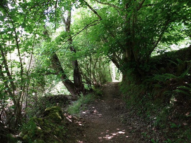 Camino PR-G 219 Ruta do río Pequeno