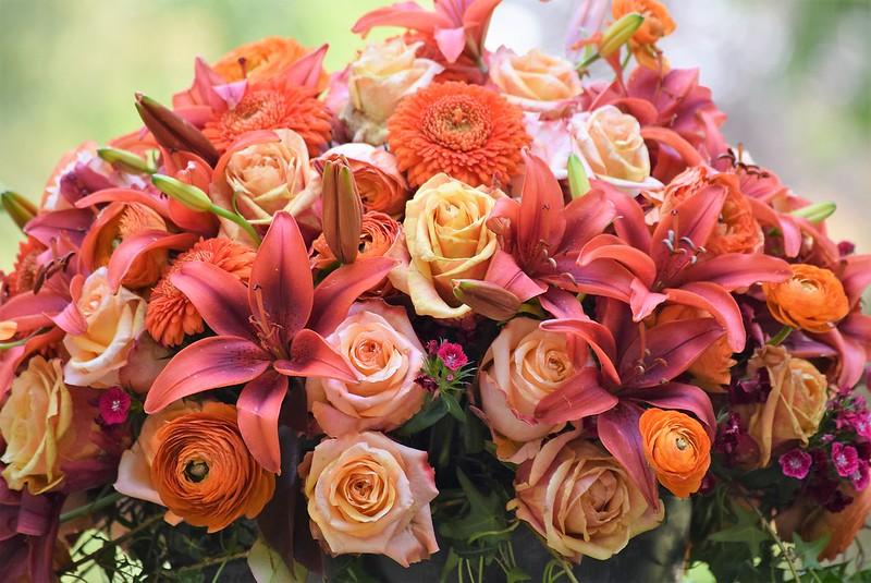 Roses 20.05 (1)
