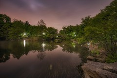 Central Park in a cloudy night