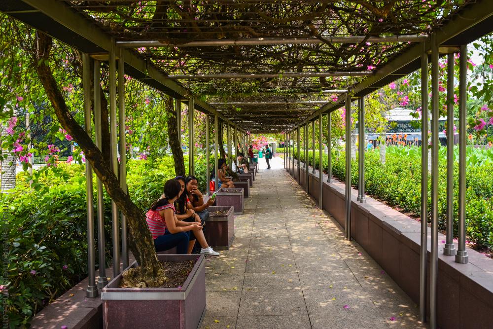 singapore-dubai-(4)