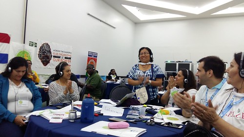 2018-5-3 Brazil: Day 1 - IDWF Continental Meeting for affiliates in Americas