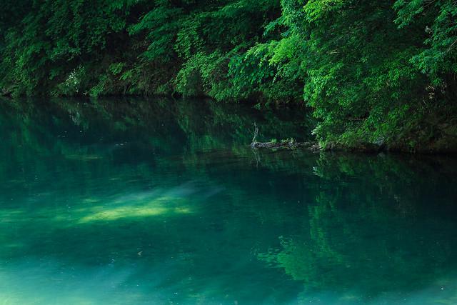Photo:記憶の森 By sirius_1984