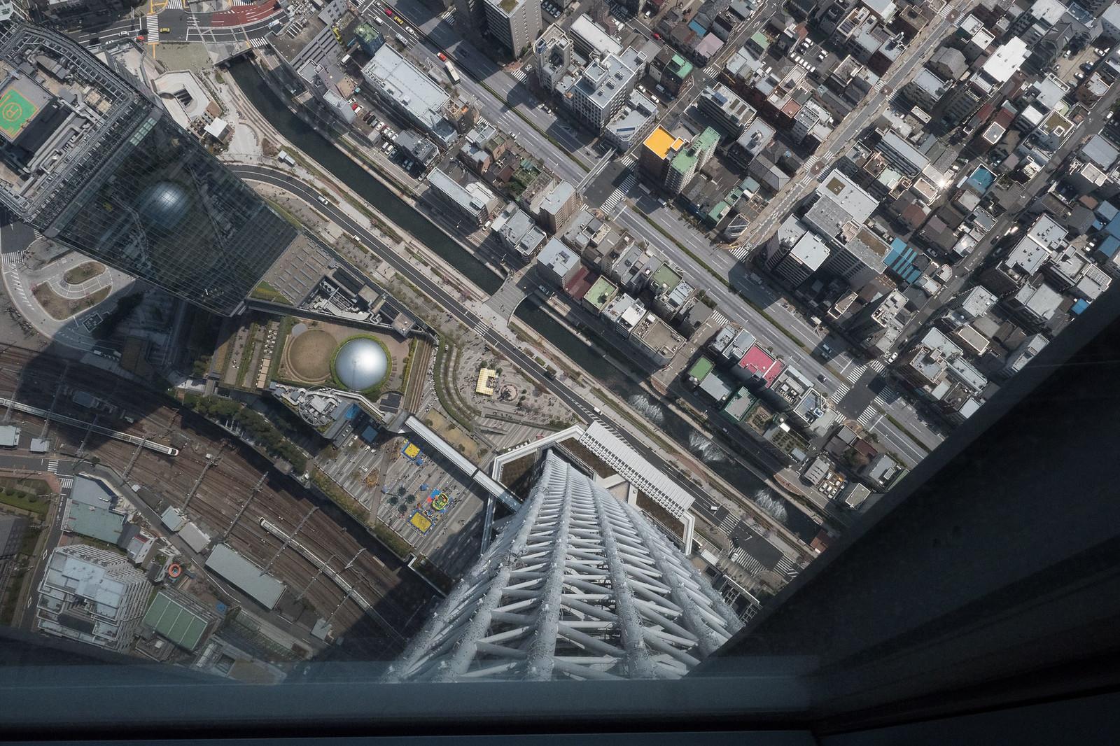 Skytree-12