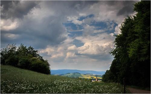 Wolken und Pusteblumen